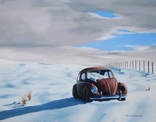 155-snow-bug